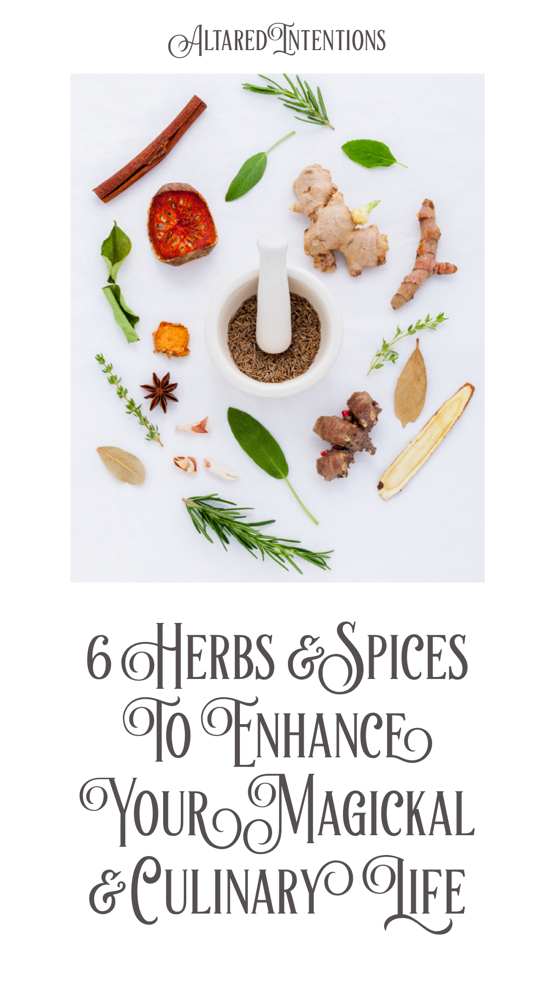 6 Herbs & Spices To Enhance Your Magickal & Culinary Life
